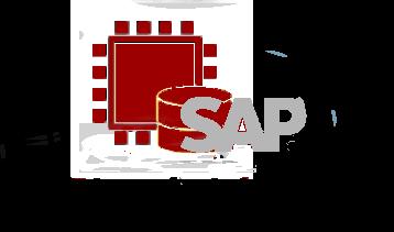B1-Solutions-SAP-SQL-HANA