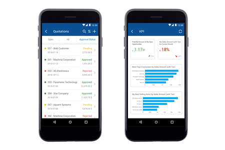 SAP-Business-One-Mobile