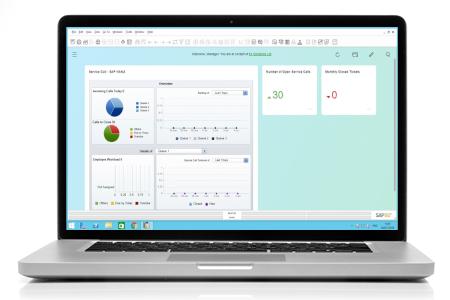 SAP financial management software displayed on a laptop